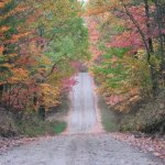 dirt road with trees and fall colors