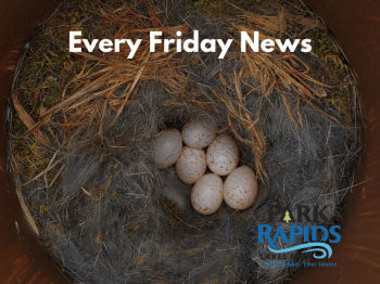 Every Friday News