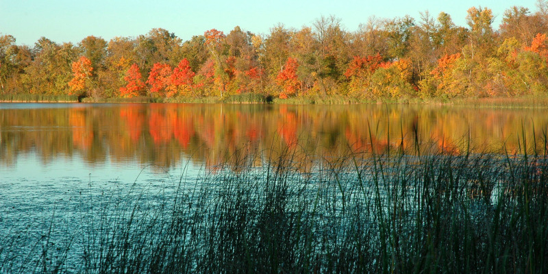 Fall Lake Itasca