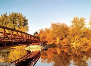 park rapids bridge
