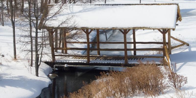 winter in park rapids