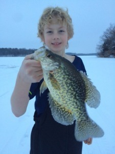 crappie will ice