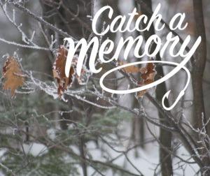 Catch a Memory_Winter
