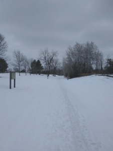 The Heartland Trail heading out of Park Rapids.