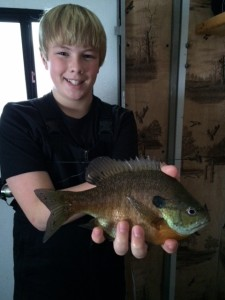 It's a great time to catch panfish.