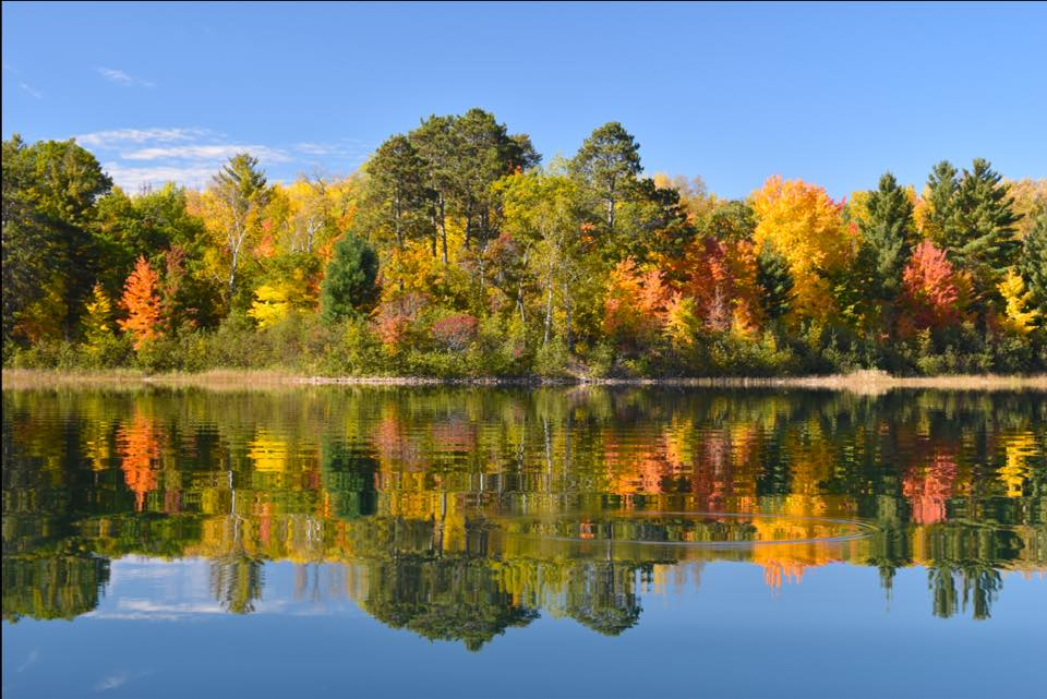 This beautiful fall colors picture was sent in to our 2016 photo contest by Tracy Holte Wright.