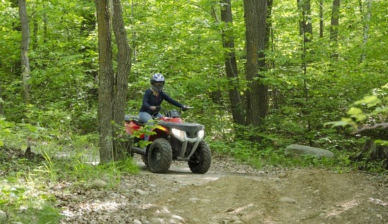 ATVs on Spider Lake Trail
